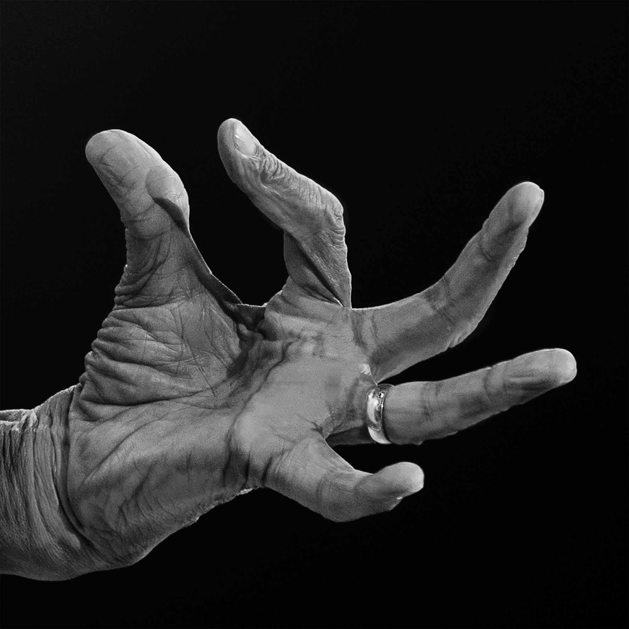 Al Jarreau   ©Sophie LE ROUX